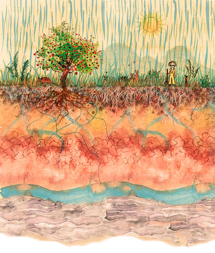 Ilustração: obra Ana Primavesi, de Pamella Simioni. Nos tons terrosos, foram usadas tintas naturais feitas com pigmentos extraídos do solo