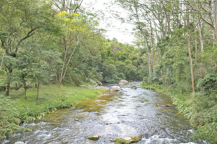 Além da APA municipal, a região de Macaé de Cima é protegida também por RPNNs (Foto: Regina Lo Bianco)