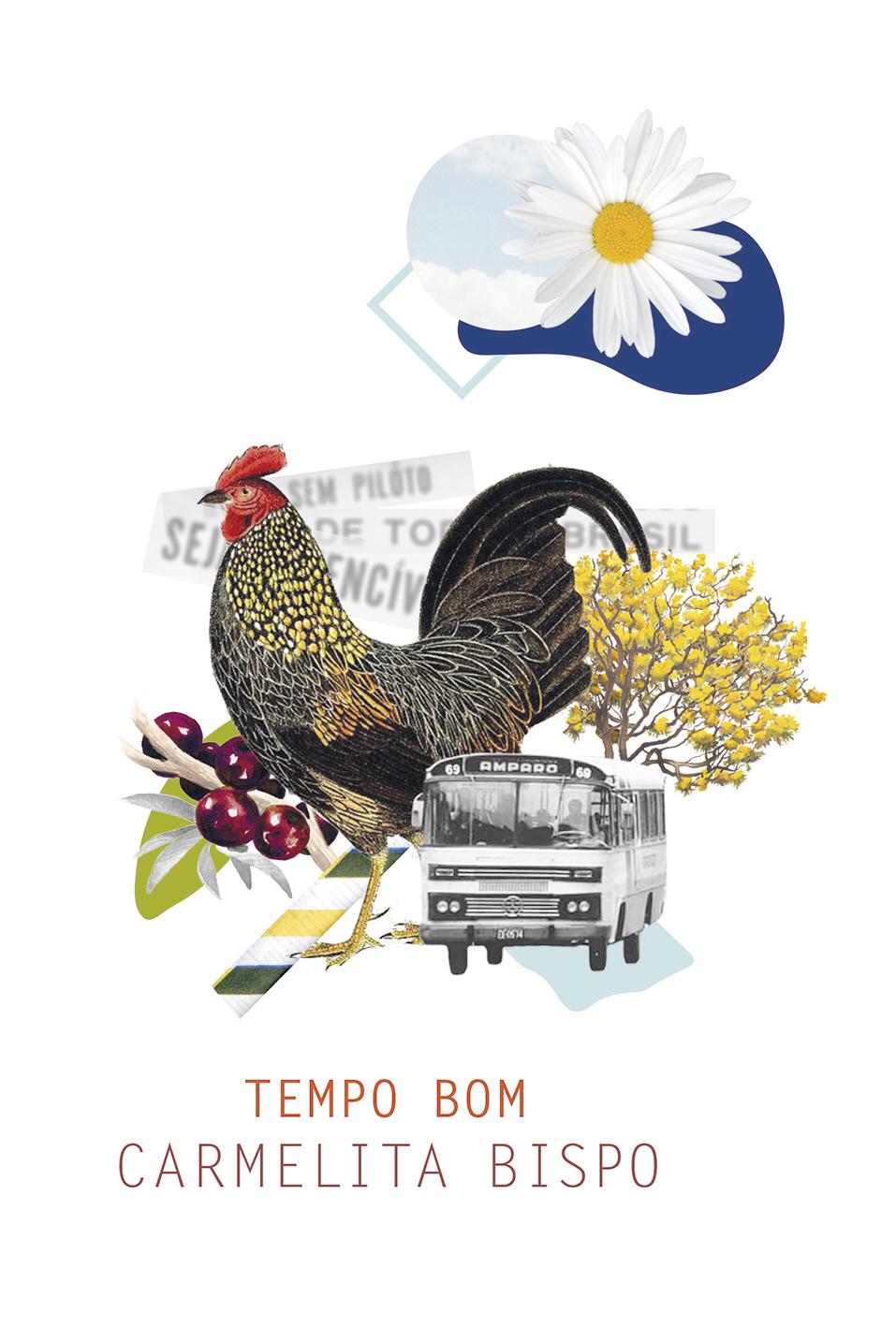 A capa do livro de Carmelita Bispo