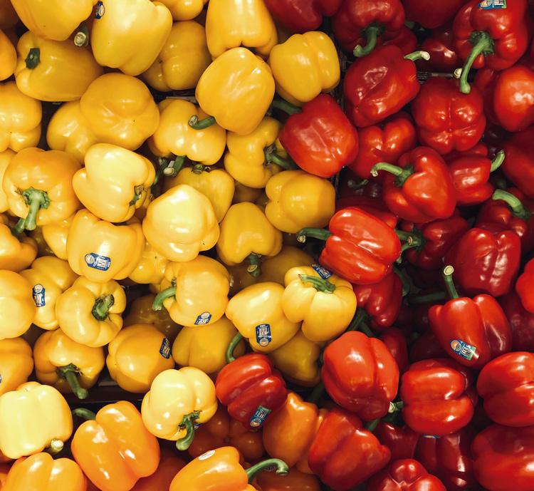 Cultivo de orgânicos em Friburgo está em franca expansão