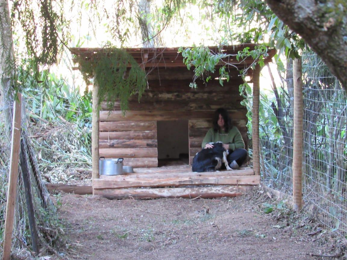 Carla Freire numa das casinhas de cachorro construídas com madeira reaproveitada (Fotos da web)
