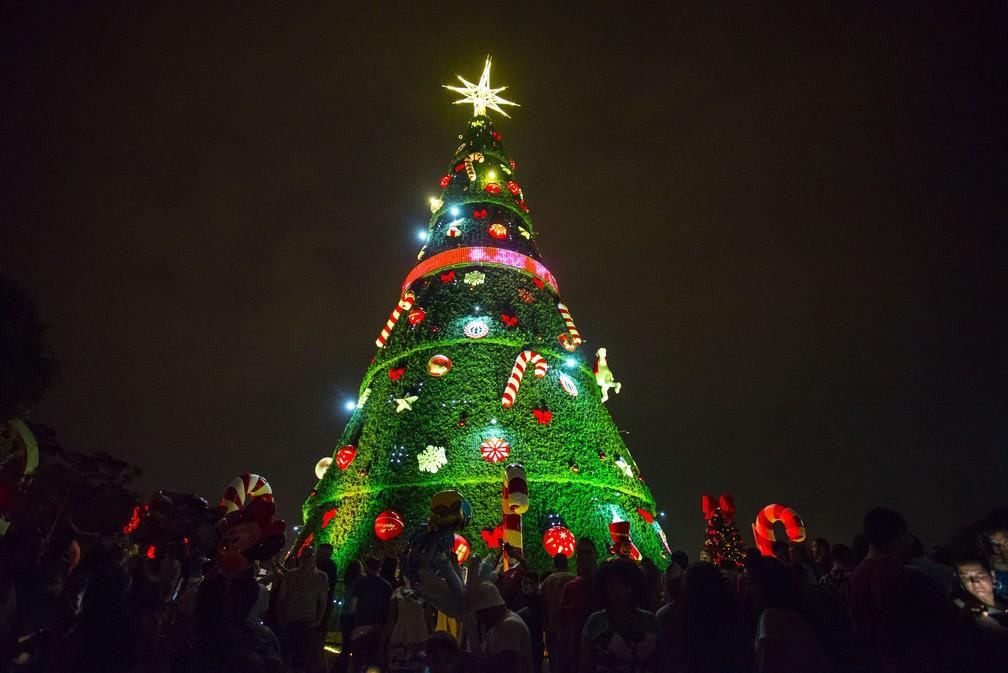 História e significado da árvore de Natal