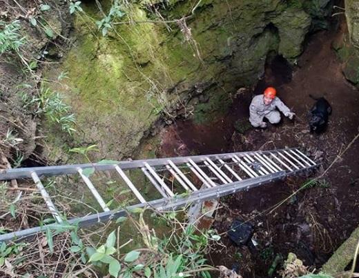 Um dos bombeiros chega ao fundo do poço, onde estava o cão (Fotos: divulgação 6º GBM)