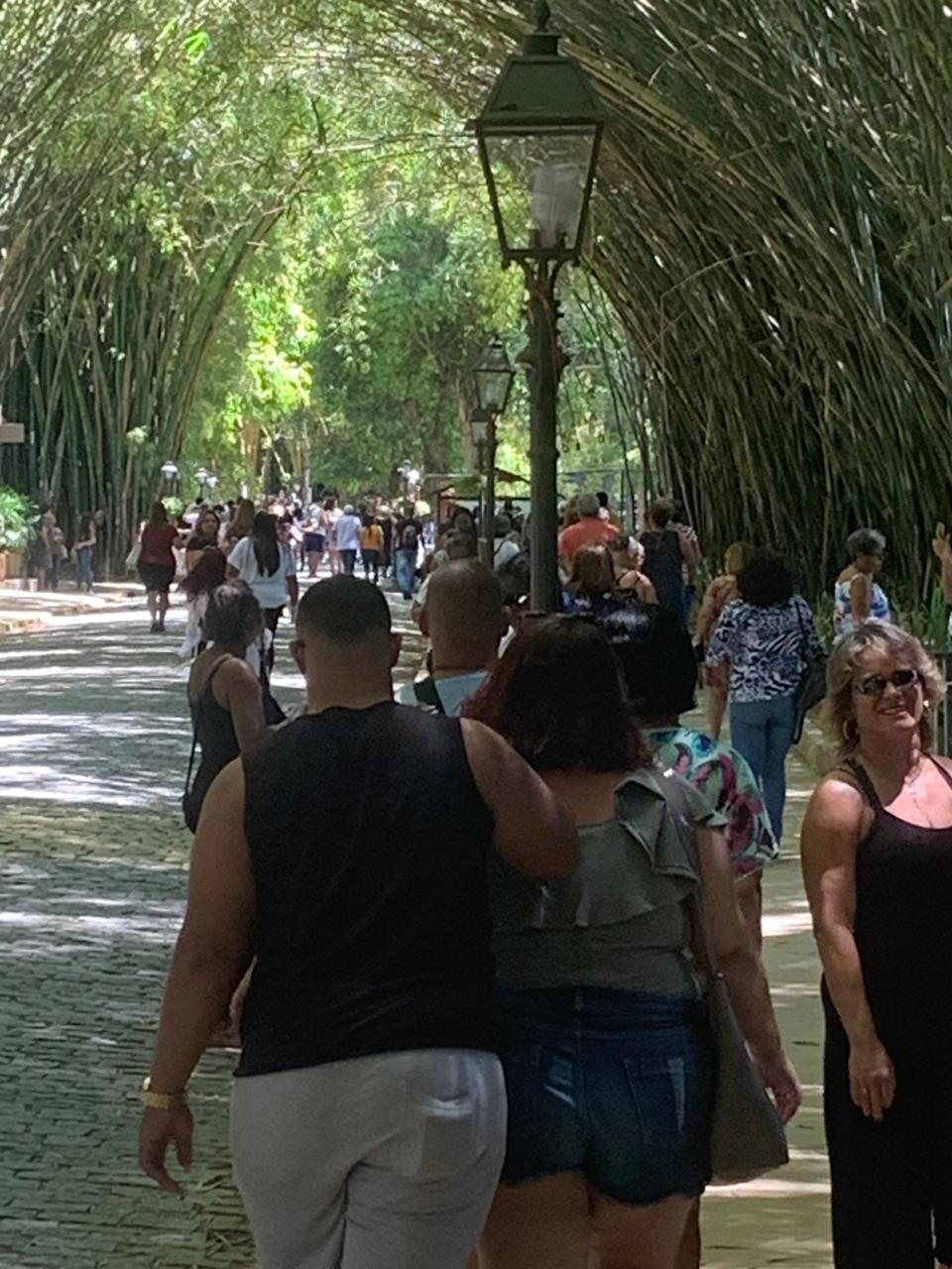 A alameda de bambus do Country lotada de turistas (Fotos de leitores)