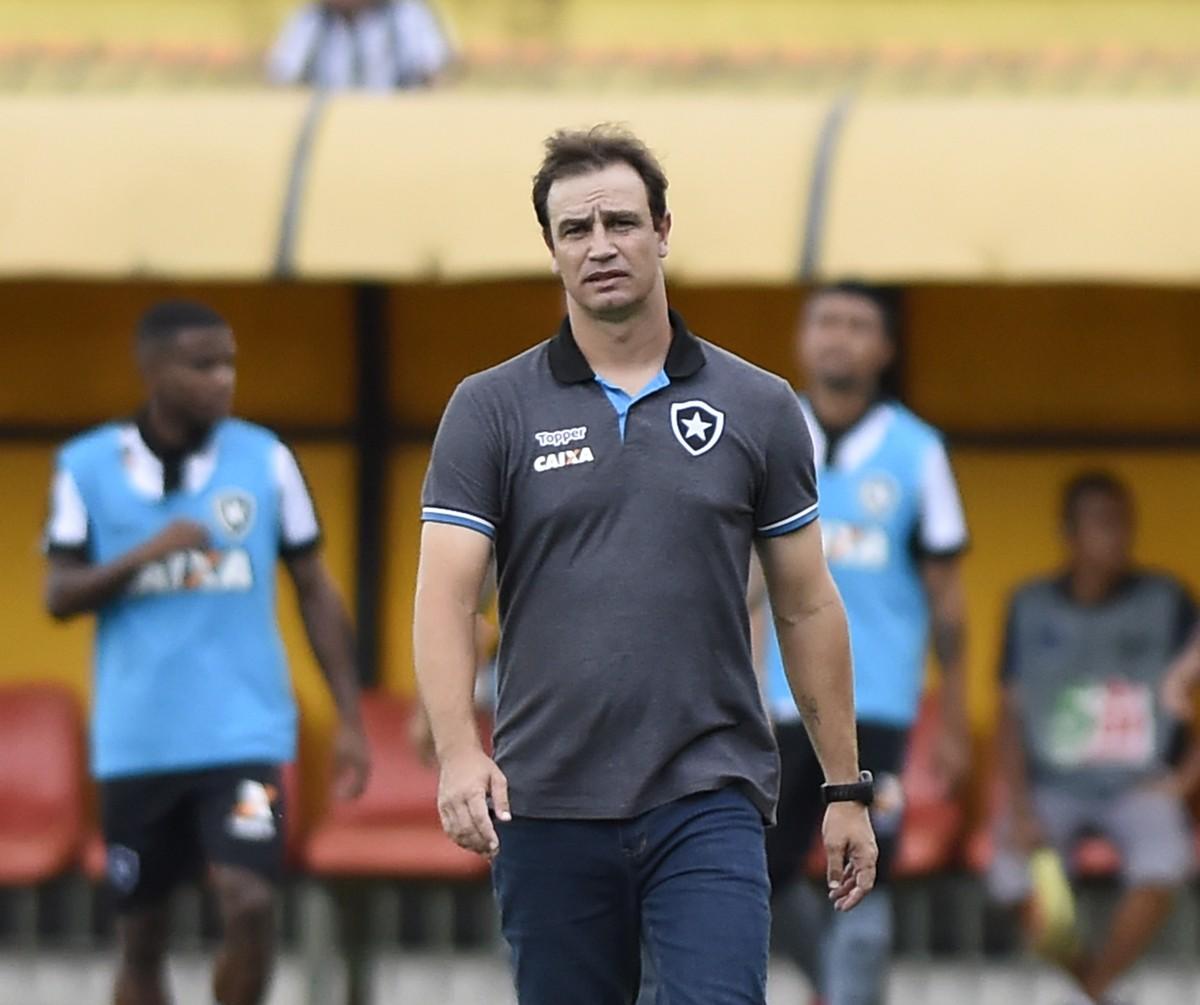 Início conturbado no Botafogo: passagem no time principal durou apenas sete partidas