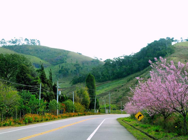 A Estrada Terê-Fri (Arquivo AVS)