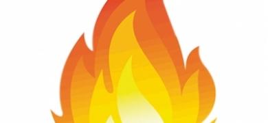 203553f08 Incêndio no Museu Nacional destruiu todas as borboletas de Julius Arp